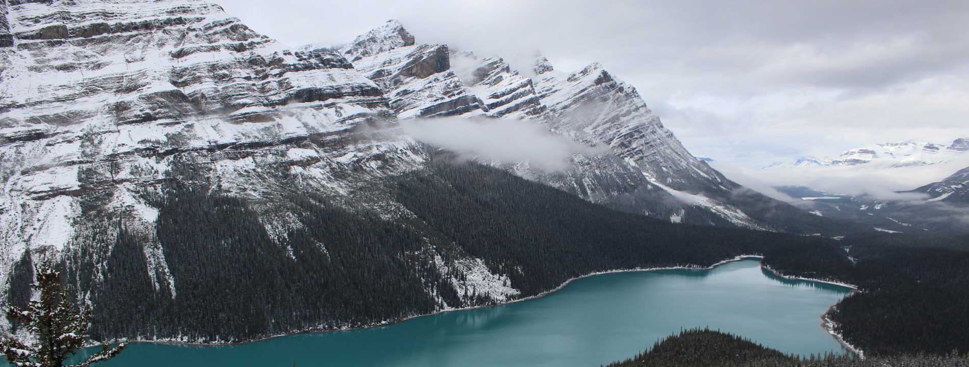 alberta mountains with river running past