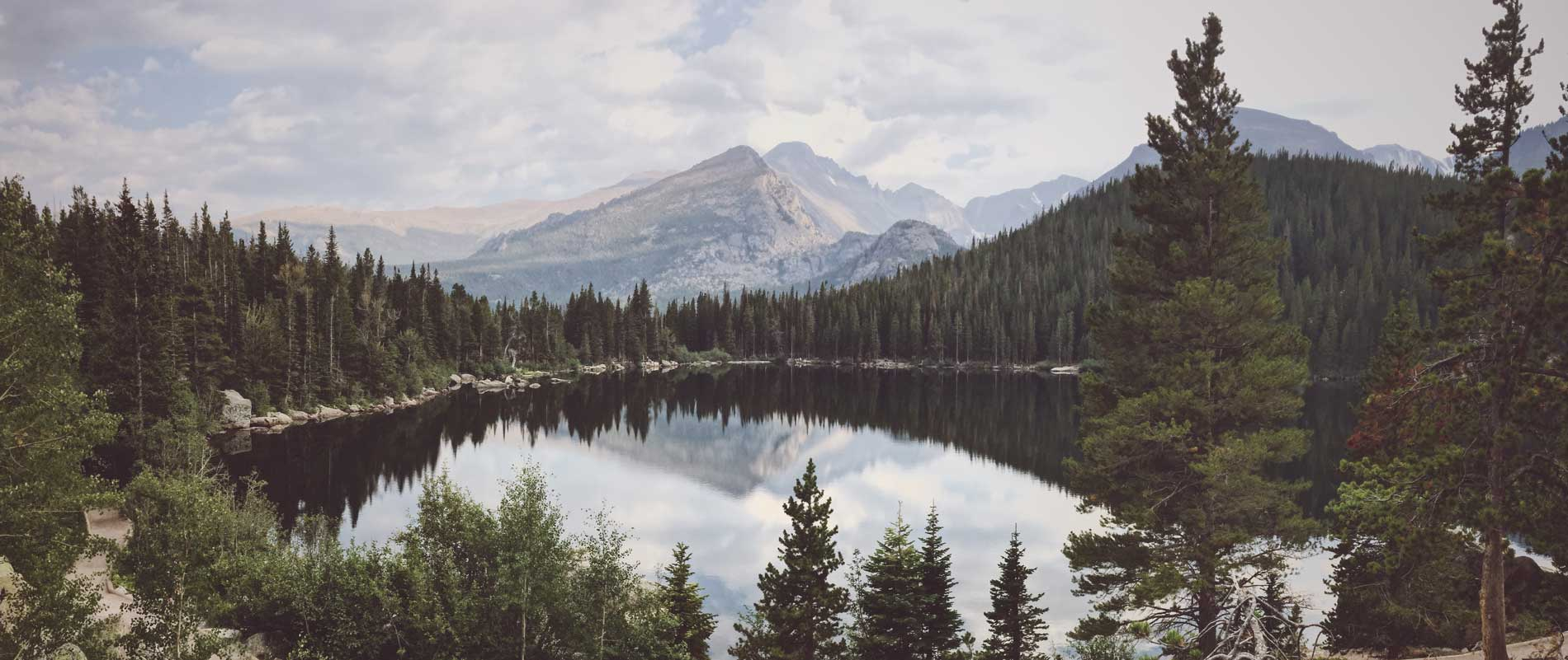forest in colorado with lake in the foreground