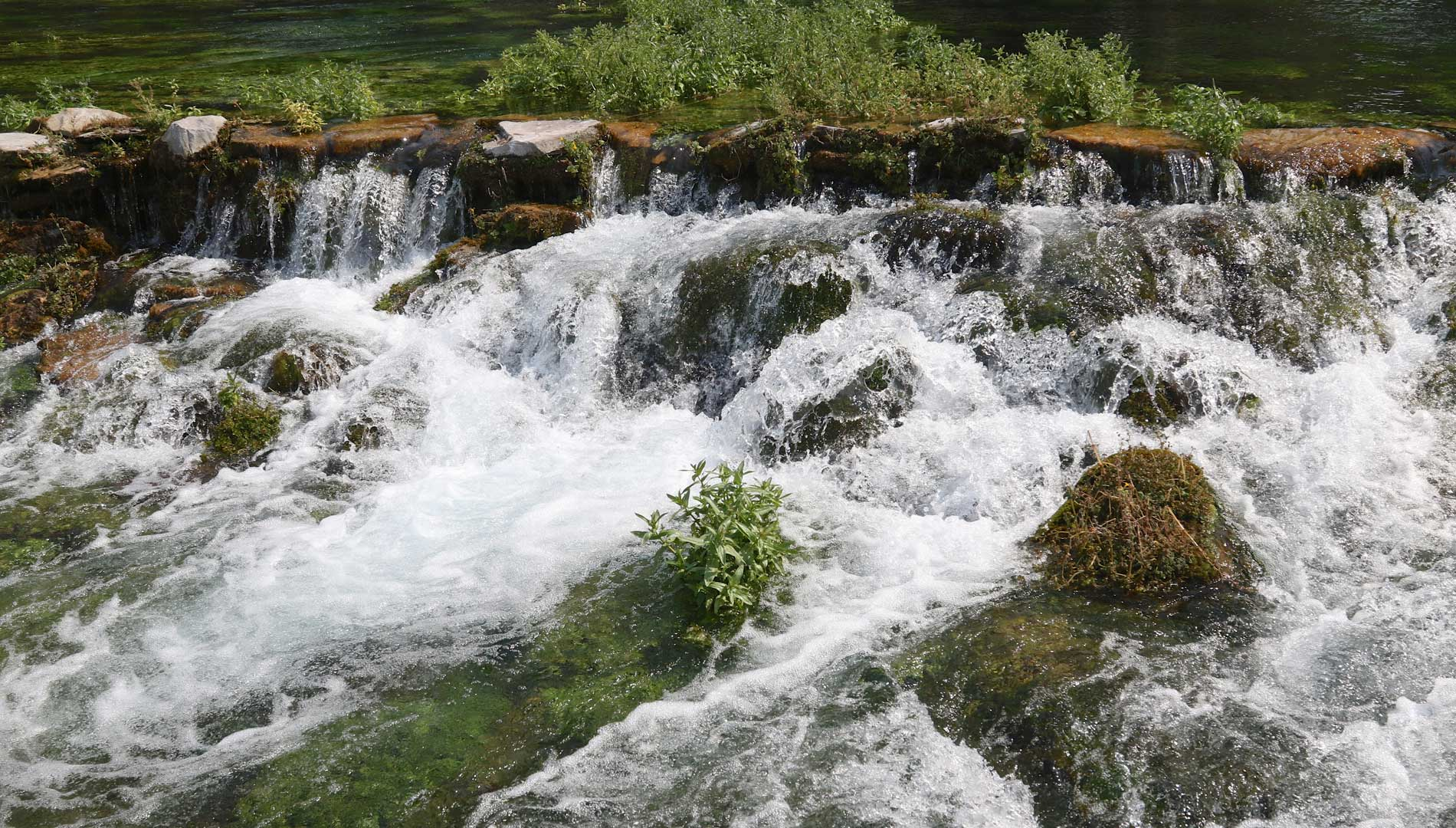 giant springs in great falls montana
