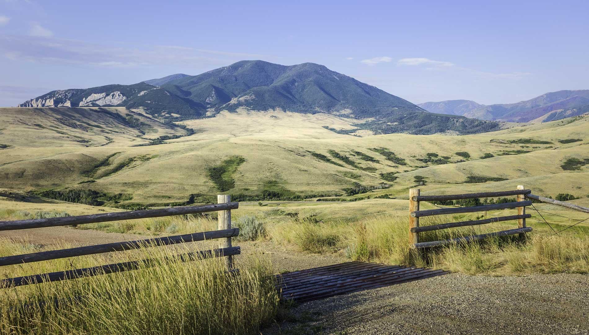 Gate to field in Havre, Montana